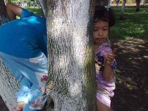 Memanjat pohon di hutan kota, yang penting hepi