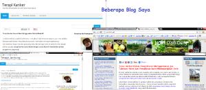 Beberapa Blog  Lain Yang Saya Gunakan Mendukung Bisnis