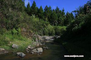 Tempat Yang Lekat Denngan Jreng-Jring Itu- Sumber : www.eastjava.com